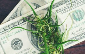High Tide Inc: Ignored Pot Stock Up 150% in 2021; Poised for Massive Growth